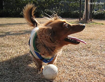 ボール遊び③