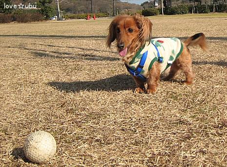 ボール遊び①