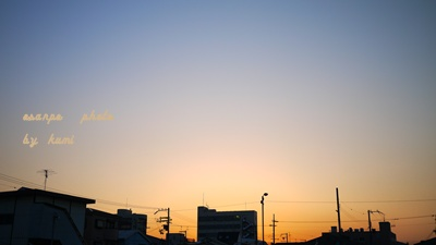 P1020388.jpg