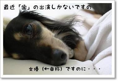 hanokazu.jpg