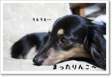 mattari_jikka.jpg
