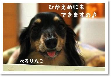 nagainowa1.jpg
