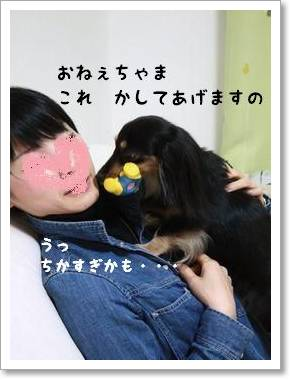 nakayoshi_310.jpg