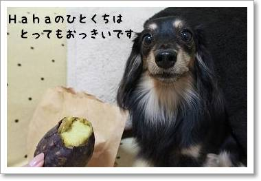 yakiimonoosanpo5.jpg