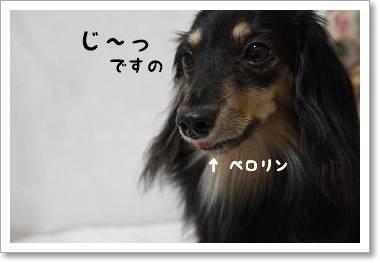 yoru_oyathu.jpg