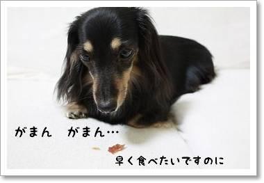 yoru_oyathu3.jpg