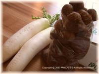 大根とサトイモ