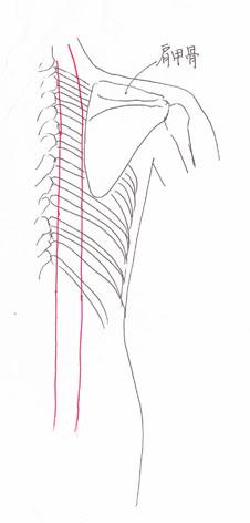 太陽膀胱経