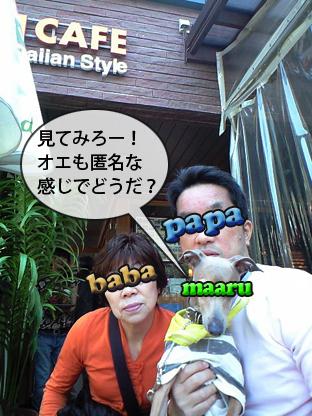 100313d01_2.jpg