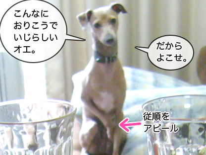 100601dm01_02.jpg