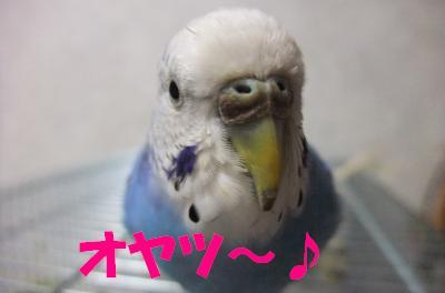 オヤツ~♪