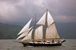 帆船ami