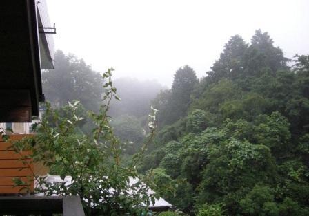 一面霧・・・この向こうは六甲山なんですが