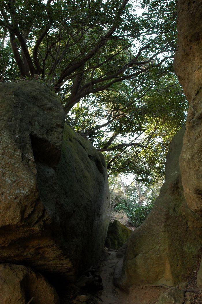 鷹取山・神武寺 060