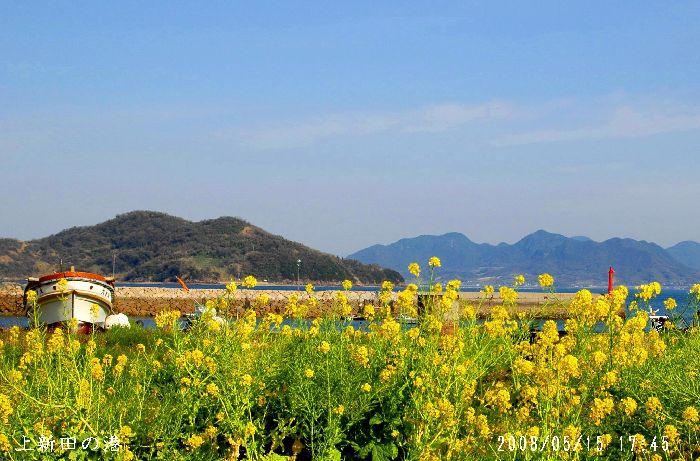 上新田漁港2