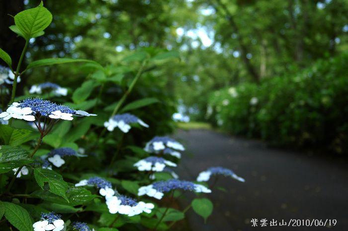 紫雲出・上新田 056