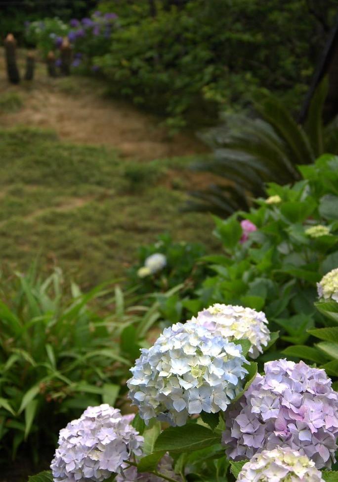 紫雲出・上新田 173