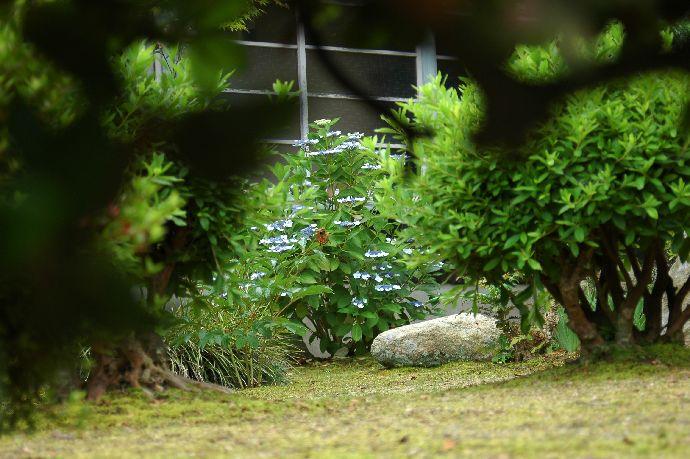 紫雲出・上新田 177