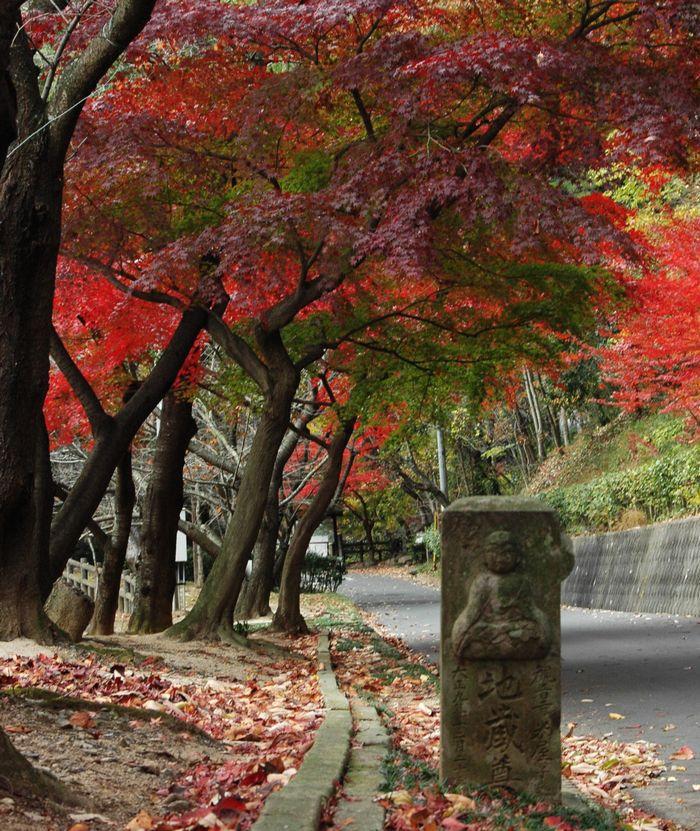 本山寺界隈 086