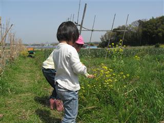 ちなつ2010