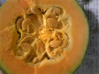 かぼちゃ切り口