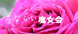 ha_418.jpg