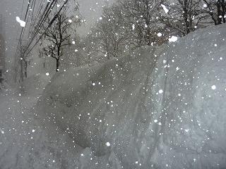 雪の歩道2