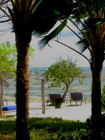 ザンジバル ホテルのビーチ