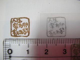 DSC02877_R.jpg