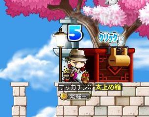 Maple11142a.jpg