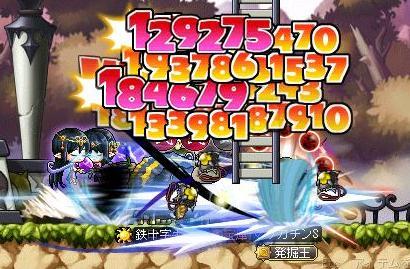 Maple11204a.jpg