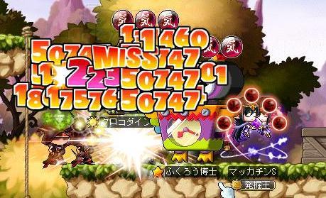 Maple11224a.jpg