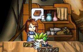 Maple7939a.jpg