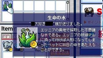 Maple7950a.jpg