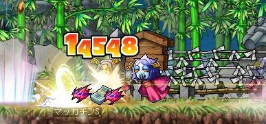 Maple8012a.jpg