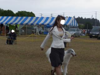 snap_makoboko0224_20115421825.jpg