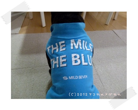 the mild6