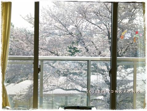 negawakuba4.jpg