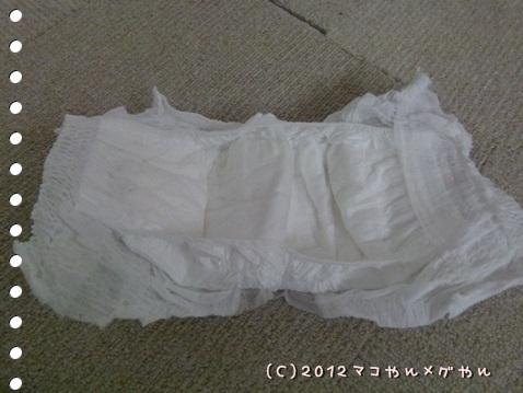 tateyoko2.jpg
