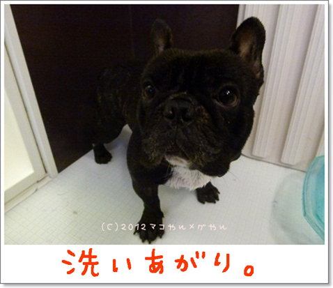 yuami10.jpg