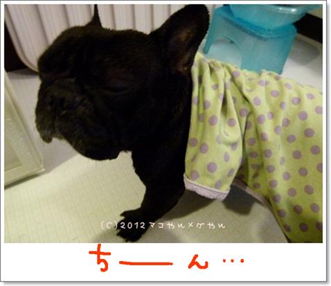 yuami11.jpg