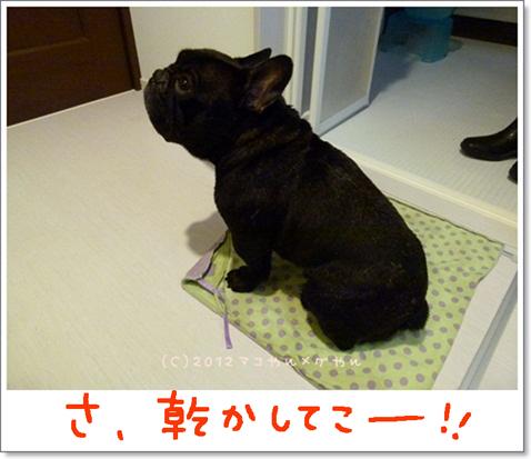 yuami12.jpg