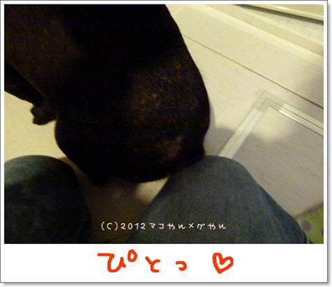 yuami14.jpg
