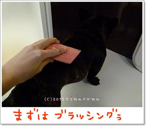 yuami3.jpg