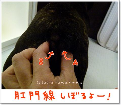 yuami4.jpg