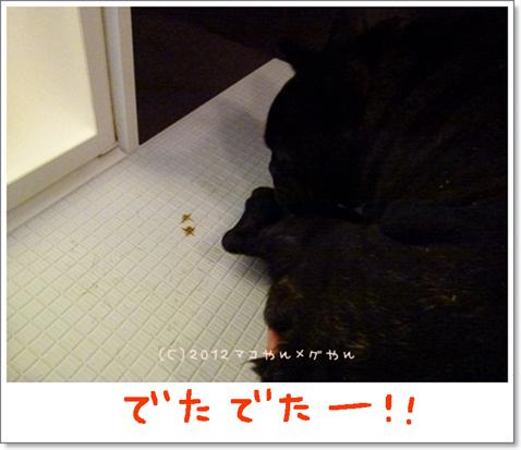 yuami6.jpg