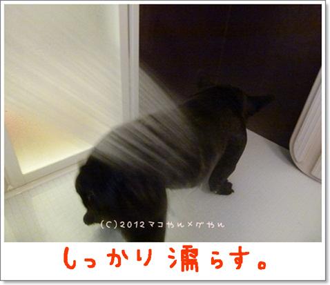yuami7.jpg