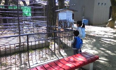 動物園03