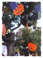 谷津遊路 街路樹