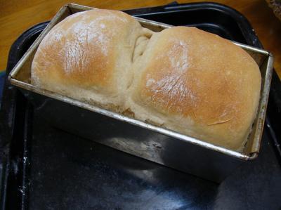 パン焼き上がり_convert_20100505225220